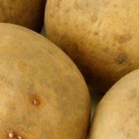 Kartoffeln_Langen